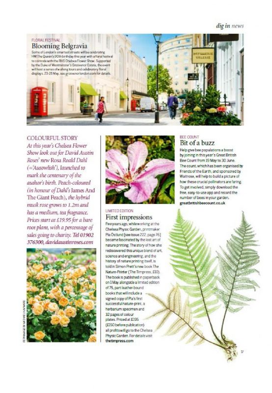gardens-illustrated_may-2016_page_2